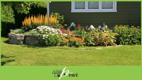 Que faire dans un jardin d\'ornement en juin – Les ...