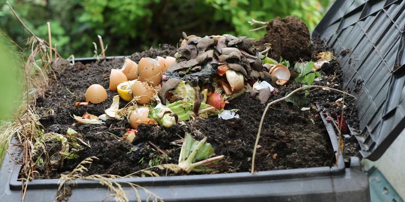 Un composteur dans votre jardin !