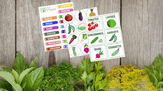 Étiquettes créatives pour les plantes du jardin