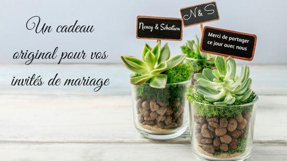 Plante succulente : Un cadeau original pour vos invités de mariage