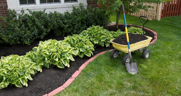Sept trucs simplissimes pour économiser l'eau dans le jardin