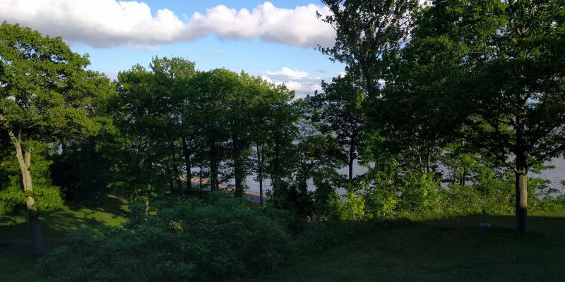 Mois de l'arbre et des forêts – Des célébrations aux quatre coins du Québec!